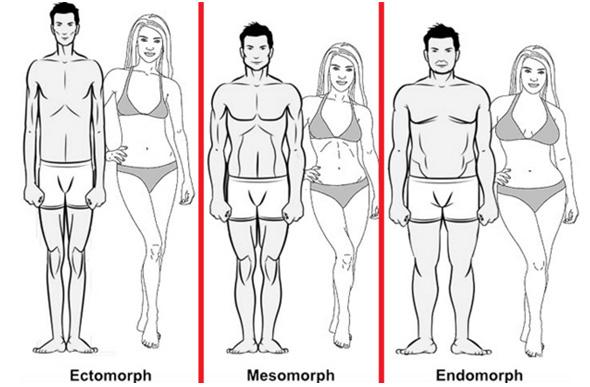 20160721-types-morphologiques