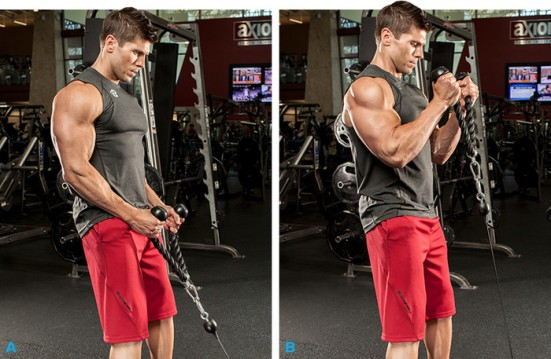 the-5-best-biceps-exercises-for-size-v2-3-700xh