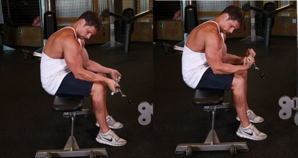 Seated-Two-Arm-Palms-Up-Low-Pulley-Wrist-Curl
