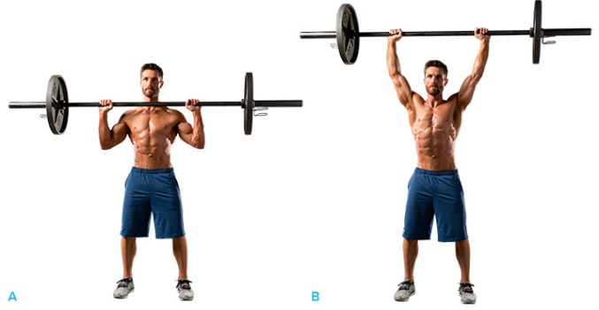 how-to-overhead-press-a-beginners-guide-graphics-3