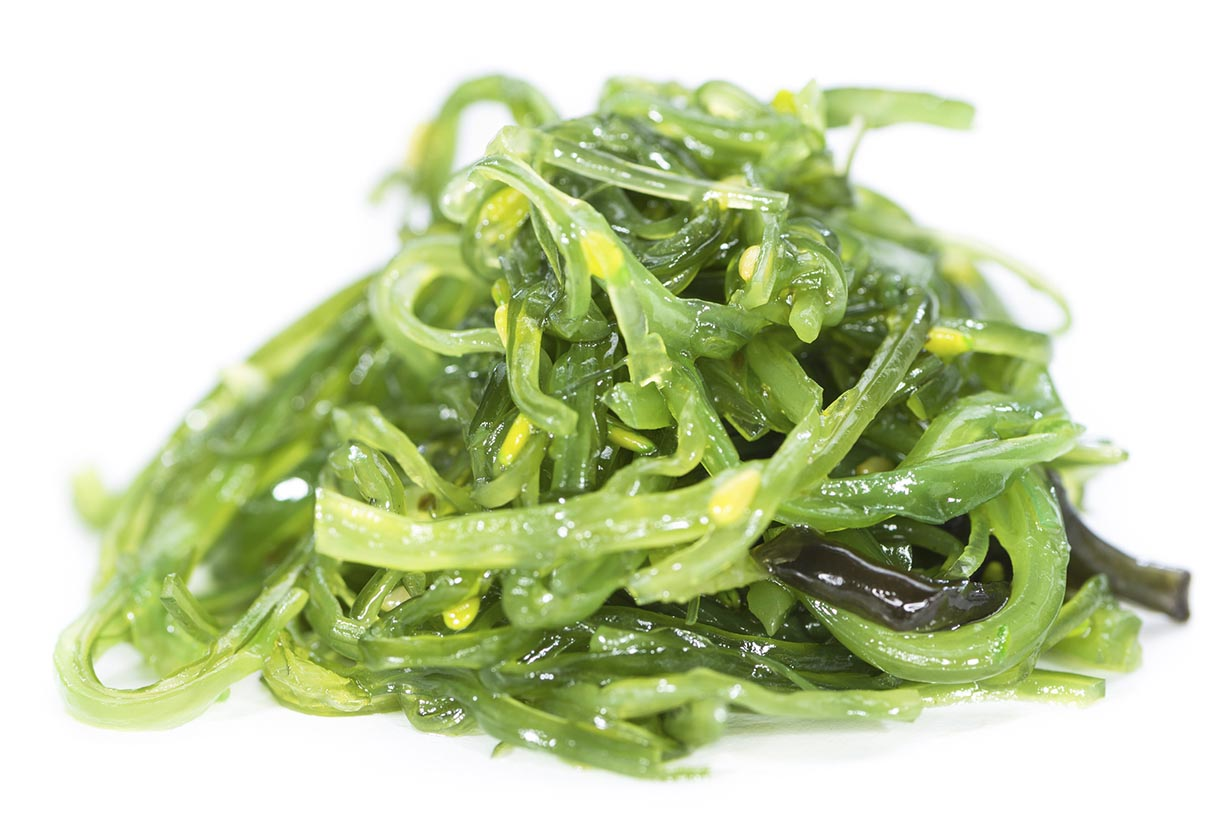 Kelp Salad Isolated On White